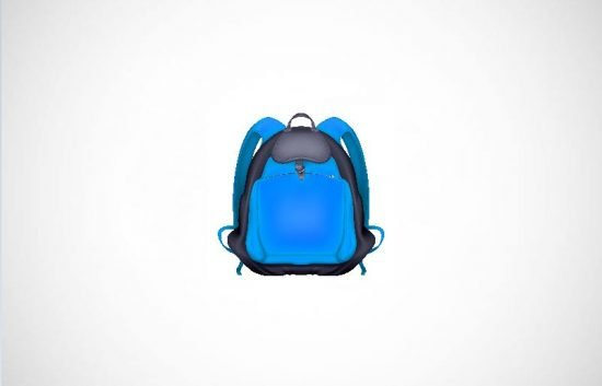 Market Research of the High-End Backpacks industry