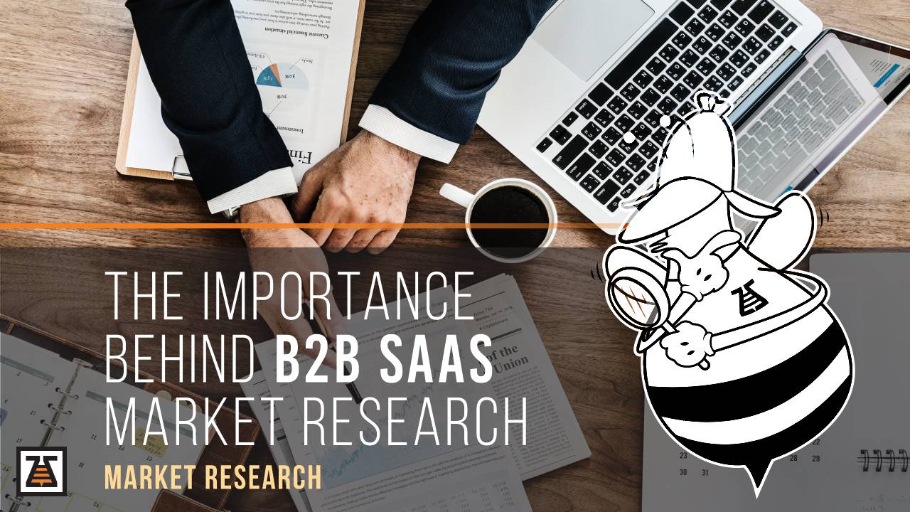 ThWhy most of the companies ignore the B2B SaaS sarketrResearch?