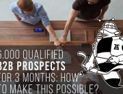 6.000 Qualified B2B Prospects For 3 Months: How To Make This Possible?